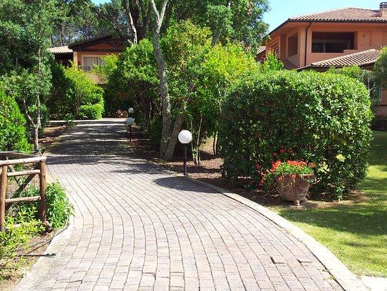 Wonderful Residence Renaione: Vialetto Du0027ingresso