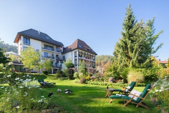 Hotel-Restaurant Felsentor: Hausansicht Parkseite