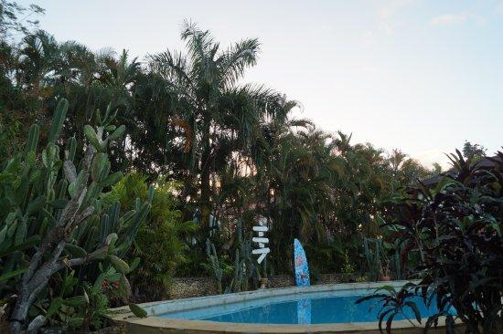 Casa Mango Photo