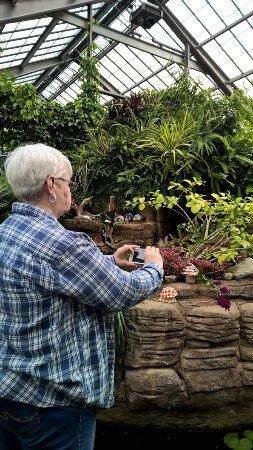 Garfield Park Conservatory & Sunken Garden: Exploring!