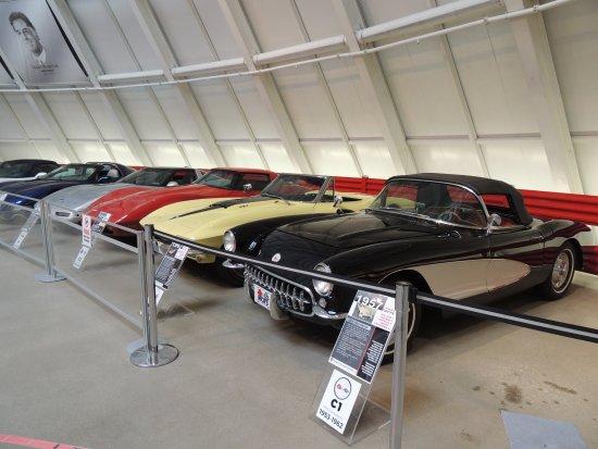 National Corvette Museum: vettes