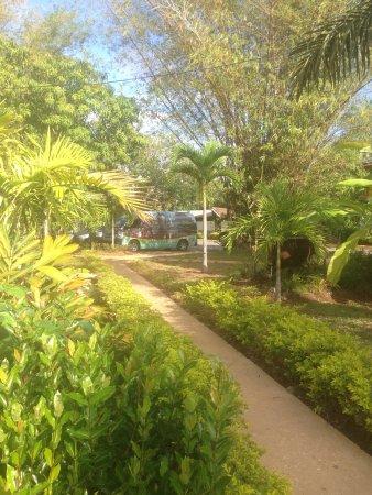 Coral Seas Garden: photo7.jpg