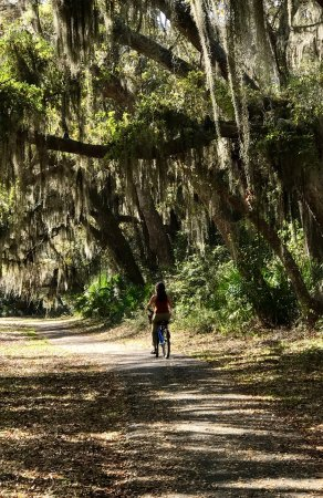 Jekyll Island Trail System All You Need To Know Before You Go