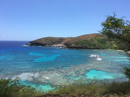 Photo of Beach Hanauma Bay Nature Preserve at 100 Hanauma Bay Drive, Honolulu, HI 96825, United States