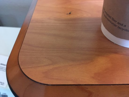 Fairfield Inn & Suites by Marriott Lake Charles Sulphur: Roach crawling around my coffee on the desk