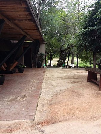 Cheetah Plains: Lugar común, para tomar algo, relajarse