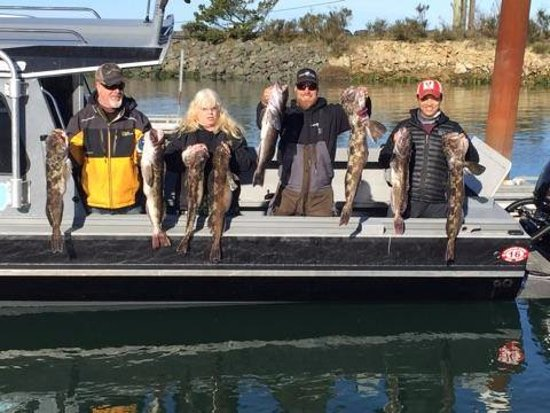 Charleston, Oregón: Returning to dock with great lingcod limits