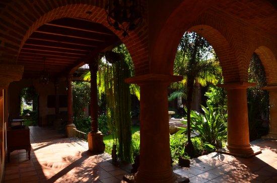 Posada de Los Leones: patio