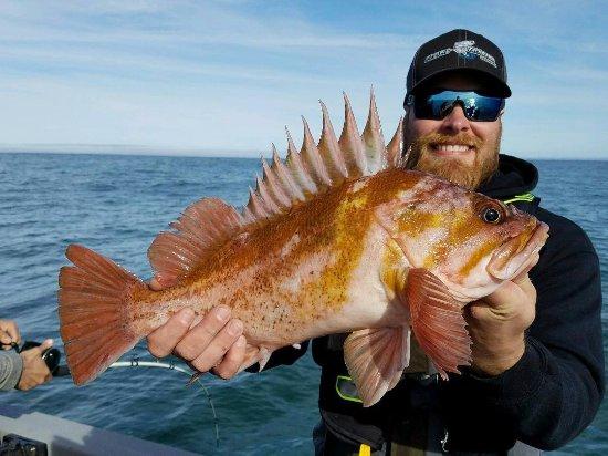 Charleston, Oregón: Nice rockfish