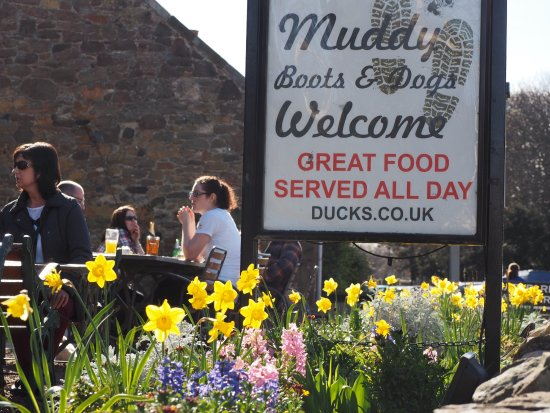 Ducks Inn - The Bar: Food from 12 noon to 9.30pm Tue to Sun