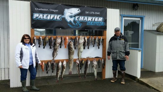 Charleston, OR: Limits in less than 90 minutes.  That's great fishing!