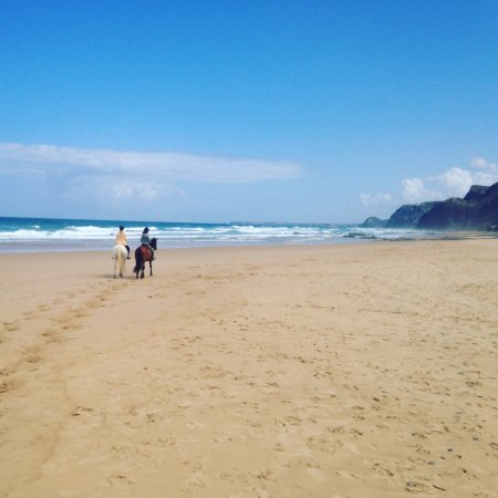 Vila do Bispo, Portugal: beach ride