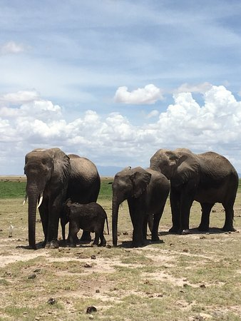 Amboseli National Park, เคนยา: photo1.jpg
