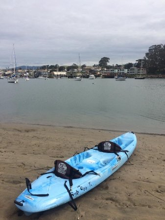 Sub Sea Tours and Kayaks : On the Sandspit looking back towards the Embarcadero