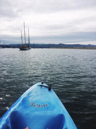 Sub Sea Tours and Kayaks : In the Harbor looking towards Los Osos in the distance