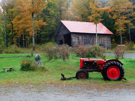 Montpellier, VT: Granite Cow and red tractor