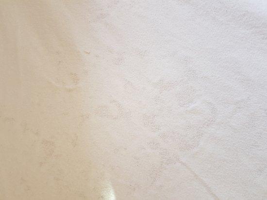 Richelieu, France: Chaises sales ainsi que la table de jardin quand a la brosse des toilettes je vous laisse médite