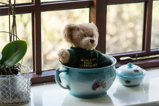 Hope, UK: Underleigh House Ted on Aston's window sill