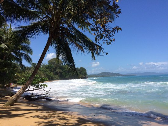 Cocles, Kosta Rika: Hop on a bike, turn left from Caribe Town and find this beach!