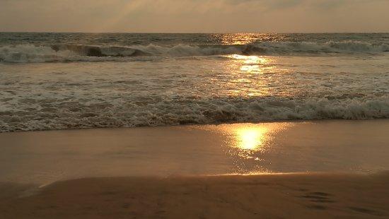 Bentota, Sri Lanka: IMG_20170320_174338_large.jpg