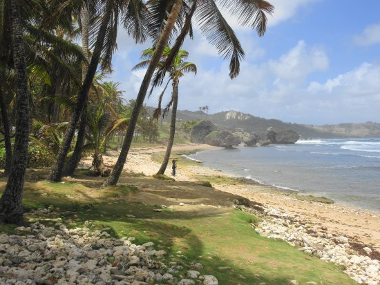 Suntours Day Tours: Bathsheba