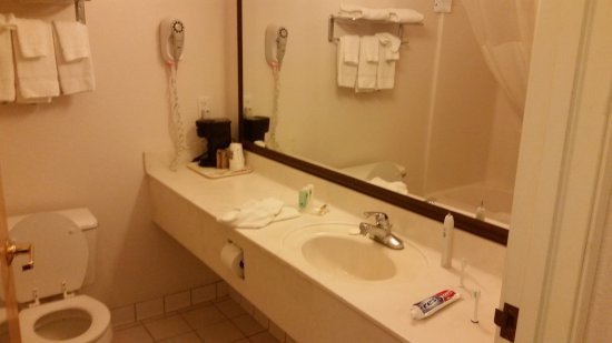 Kalamazoo, MI: Good sized bathroom