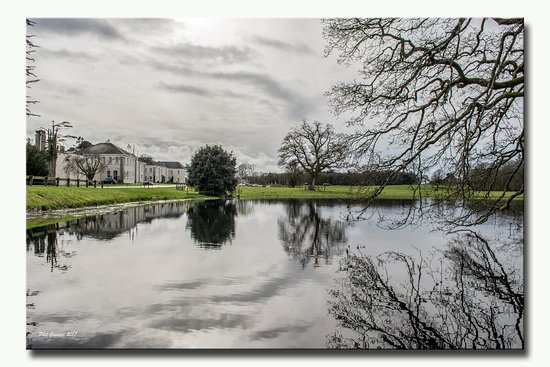Castlemartyr, İrlanda: Wonderful peaceful walks