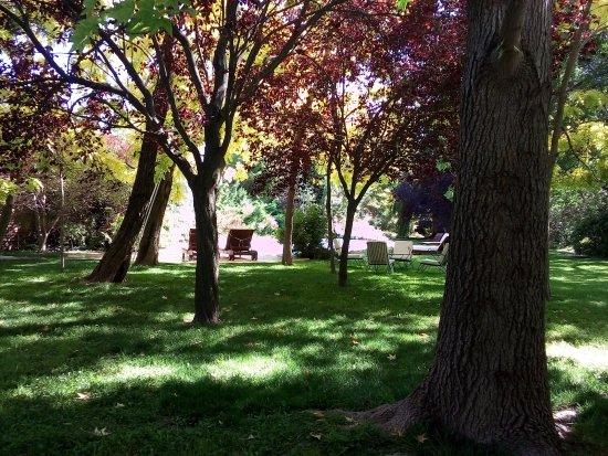 Casa Glebinias: Vista da mesa de almoço montada no jardim quando chegamos de viagem