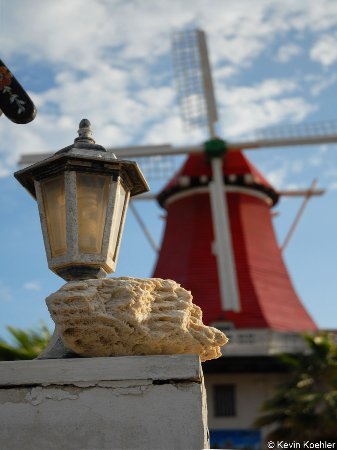 Old Dutch Windmill: Windmill and a piece of coral.