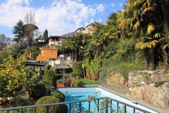 Art Hotel Riposo: Rooftop Pool
