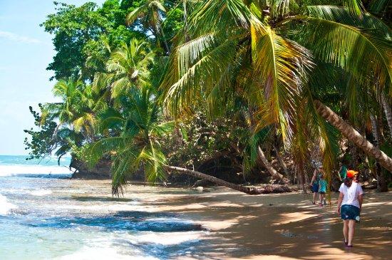 Cahuita, Costa Rica: Esto es como un sueño!!