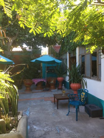 La Damiana Inn: photo1.jpg