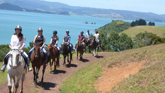 Waiheke Island, New Zealand: summer 2016 -17