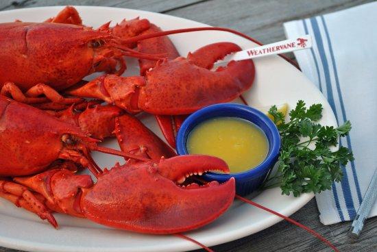 Kittery, ME: Twin Lobster Dinner