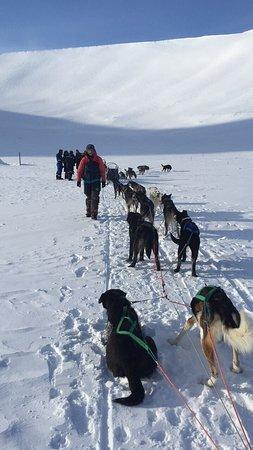 Longyearbyen, Norge: photo0.jpg