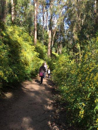Westwood Hills Park: photo2.jpg