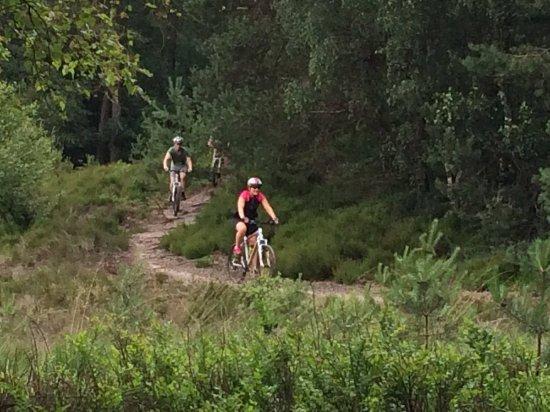 Mountainbikenopdeveluwe.nl