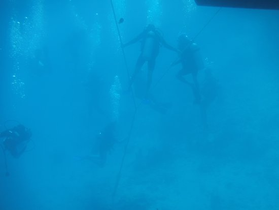 Ambergris Caye, Belize: Diving the Blue Hole