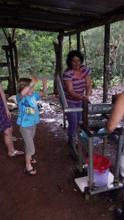 Comunidad Agroecologica Juanilama: Pressing the sugar cane