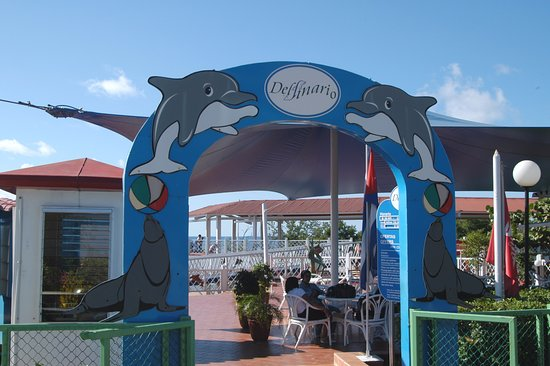 Delfinario de Cienfuegos