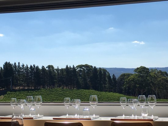 Hahndorf, Australia: The View from the wine tasting area