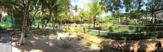Mussulo, Angola: Jardim e paisagismo interno.