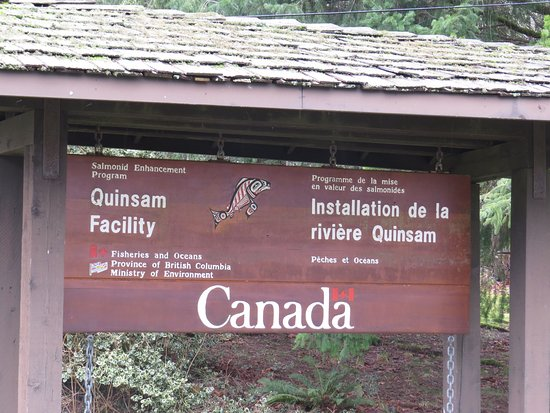แคมป์เบลล์ริเวอร์, แคนาดา: photo9.jpg