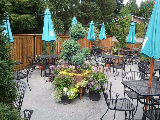 Lake Forest Park, WA: Patio oasis