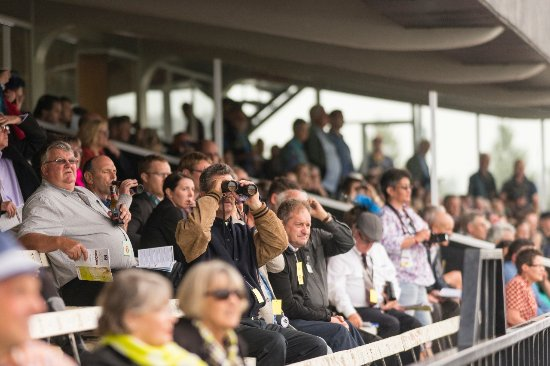 Pukekohe, Yeni Zelanda: Thoroughbred Raceday crowds