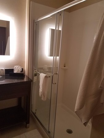 Fletcher, NC: roomy, no-more-shower-curtains shower!