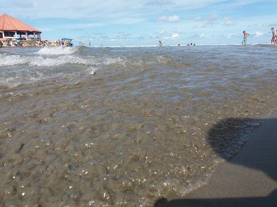 Gaivota Beach