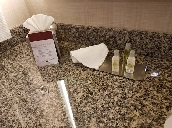Brisbane, CA: DoubleTree by Hilton Hotel San Francisco Airport North