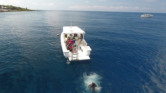 West End, Honduras: Divers getting wet