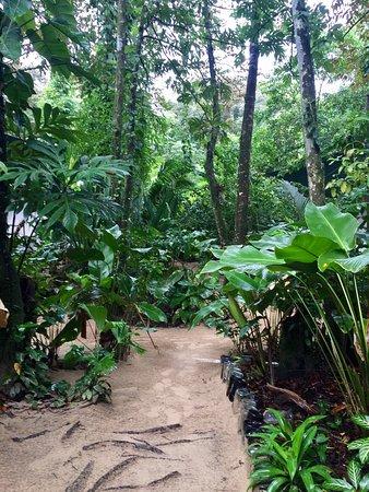 Isla Bastimentos, Panama: photo6.jpg